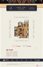 孔雀城-复羽-三室两厅两卫