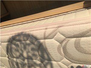 去年买的曲美床,今年10月份换的新床垫