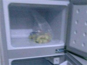 處理冰箱自己來拉,就用了一個月