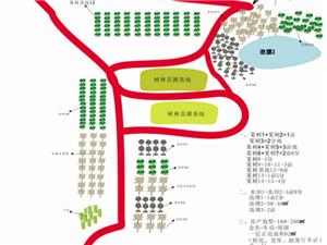 枝江柑橘果树基地29亩和房产223.39�O售58万