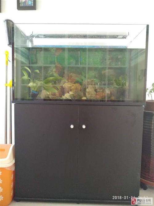 低價出售8成新魚缸+柜子,帶過濾設備等