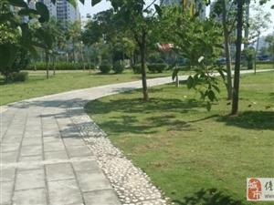 海南儋州望海国际广场2室2厅1卫双阳台 71.5万元