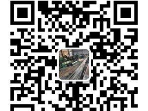 聊城开发区批发零售东平湖纯野生大鲤鱼