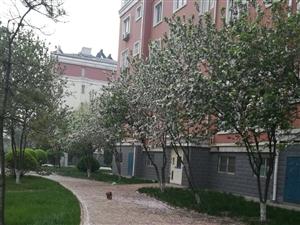 康居花园精装修带家具房子干净整洁3室2厅1卫