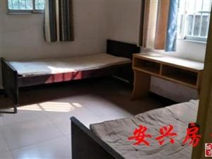 老城区3室2厅1卫1000元/月