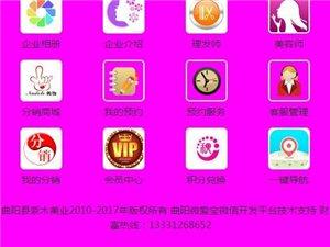 網站建設、微信公眾號開發、網絡營銷推廣運營方案制作