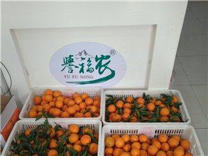 桂花园誉福农e+农优品线下体验店新鲜农产品天天有售