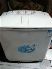 半自动洗衣机出售