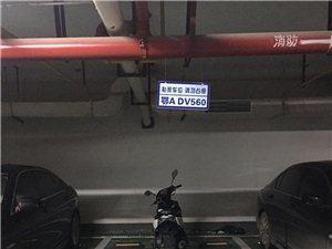 现有帝景豪庭地下车库车位出租(超低价超低价)