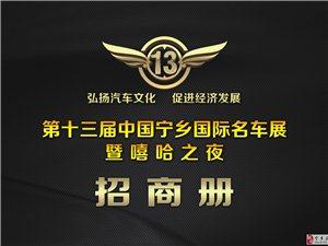 第十三届中国宁乡国际汽车展暨嘻哈之夜招冠名赞助商