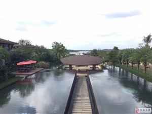 中铁诺德丽湖半岛伴水而居独栋别墅私家游泳池