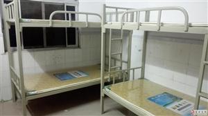 低价出上下铺单人床,全新?。?!
