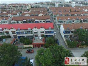 东青花园精装10楼114.5平带车位储藏室89万