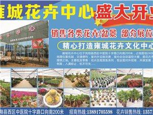 雍城花卉中心盛大开业啦,