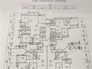 新县城和安梅花城(套房、单身公寓、商铺)专场