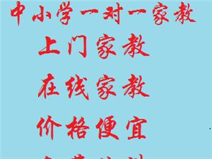 赵县在线学霸家教,一对一家教,上门家教
