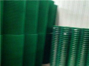 长年批发零售 带塑电焊网 电话:13785265472