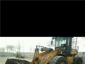 低价(6.5万)转让个人2011年5O铲车保证正常使用