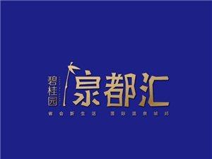 碧桂园·泉都汇(暂未上线)