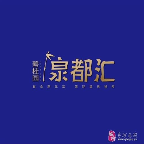 碧桂园・泉都汇(暂未上线)