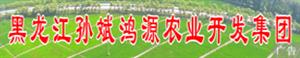 桦南孙斌鸿源农业开发集团