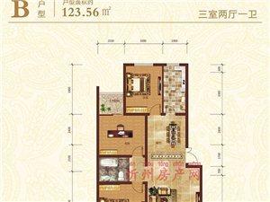 B户型123.56㎡三室两厅一卫