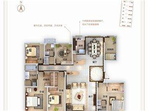 D户型245�O5室两厅两3卫