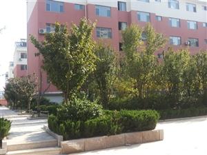 北海城市花园4室2厅2卫95万元