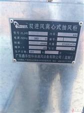 大型厨用(饭店用)油烟净化设备一台