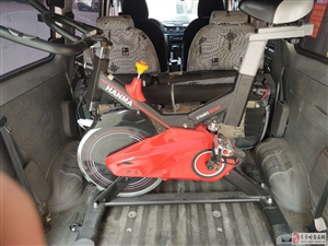 动感单车出售
