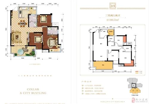 12号楼,三室两厅一卫