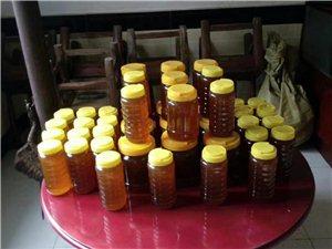 长阳两河口涂先生现有蜂蜜出售,无添加,口感醇正
