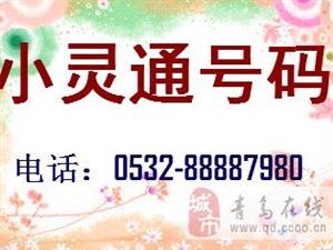 澳门网上投注官网8位数号码小灵通号码可以放在手机上用