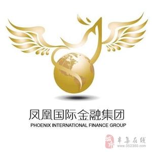 鳳凰國際招商中心  尋求合作伙伴