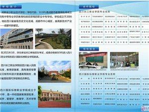 成都金沙职业技术学校面向筠连县招生计划