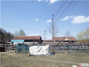 出售榆木桥子村委附近一处房产价格48万元