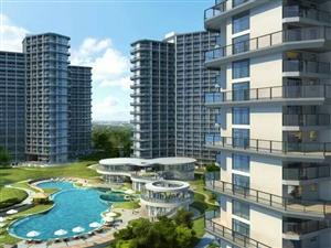 华侨新村3层独栋楼土地面积492平采光好急售
