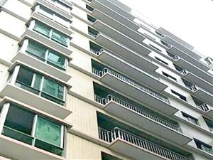 惠州小金口农民房小区式3室2厅2卫24.8万元