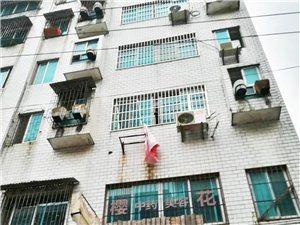 融家地产:海燕市场黄金门面1-6层特价出售
