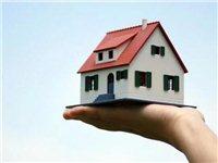 开发商为何急着把房子卖出去,而不等到升值再卖?