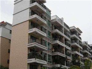 南门市场市一下附近三房两厅92平米只需66万