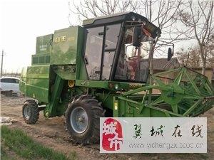 一七年谷王出售13593540053
