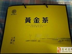 安吉黄金茶(新茶)低价出售