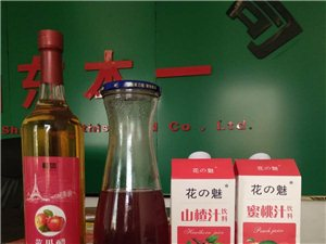 果汁招代理适合有餐饮渠道的代理商
