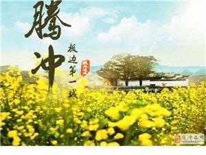 騰沖市地方政府債券融資計劃(收益8.5%)