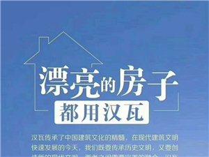 汉能薄膜发电集团新产品汉瓦山阳招商