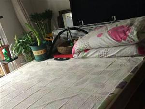 1.5米高箱双人床