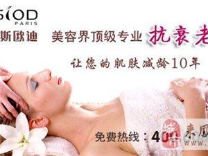 女人创业首选美容行业