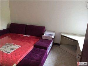 天洋城,两室,室内干净,13000一年2室2厅1卫1083元/月