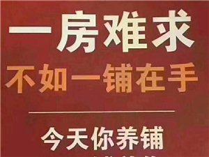 芙蓉新城臨河邊旺鋪39平年租2.6萬只售56.8萬